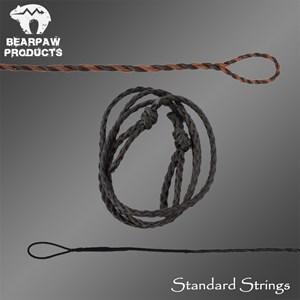 Standard Strings