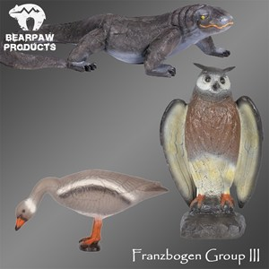 Franzbogen Group III