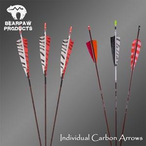 Sageti Carbon Personalizate