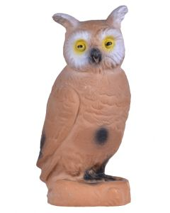 60043 Longlife Little Owl