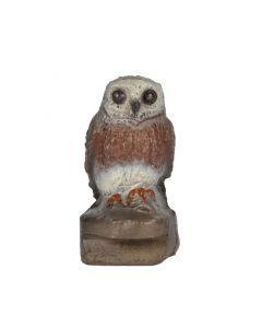 60173 FB Little Owl