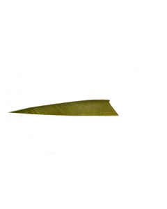 18100 3 INCHES SHIELD SOLID OLIVE GREEN RW